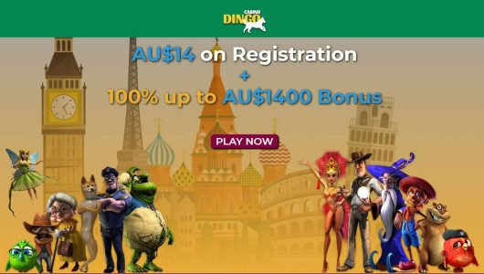 dingo casino review